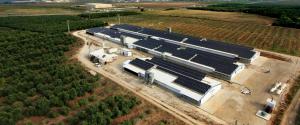 חברות להתקנת מערכות סולאריות