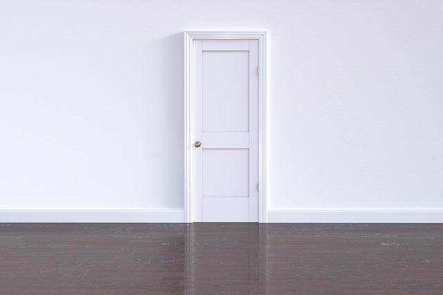 הכל על בחירת דלתות לבית